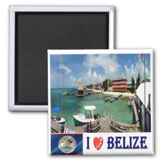 BZ - Belize - I Love 2 Inch Square Magnet