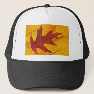 BZH22-0310-0089 TRUCKER HAT