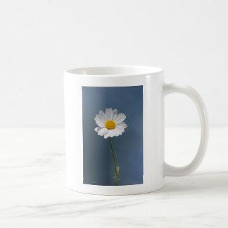 BZH22-0410-162 COFFEE MUG