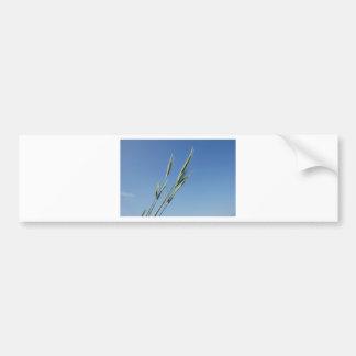 BZH22-0610-1 BUMPER STICKER