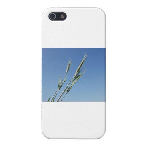 BZH22-0610-1 iPhone 5 CASE