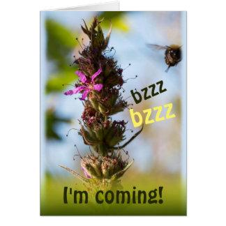 Bzzz I'm coming! CC0764 Loosestrife & Bumblebee Card