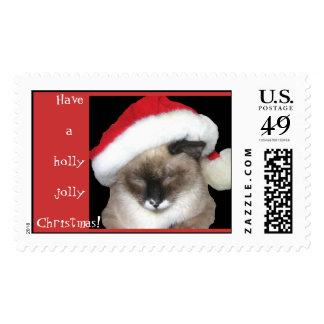 C4C Christmas Postage Stamps!