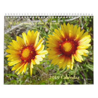C6 Wildflowers of the Prairies 2019 Calendar