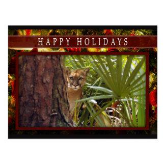 c-2011-cougar-008 postales