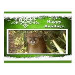c-2011-cougar-049 postal