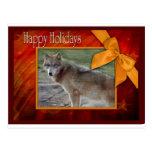c-2011-grey-wolf-002 postales