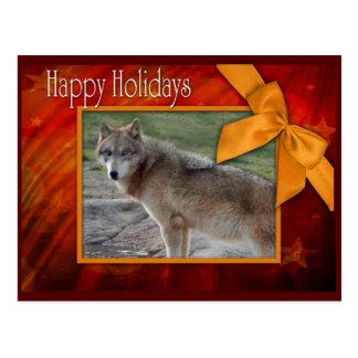c-2011-grey-wolf-002 postcard