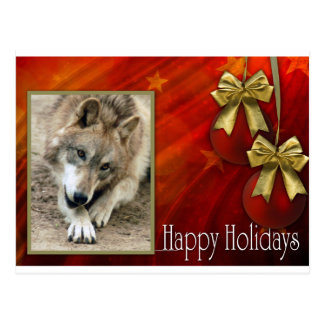 c-2011-grey-wolf-003 postcard