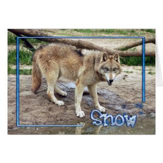 c-2011-grey-wolf-004 card