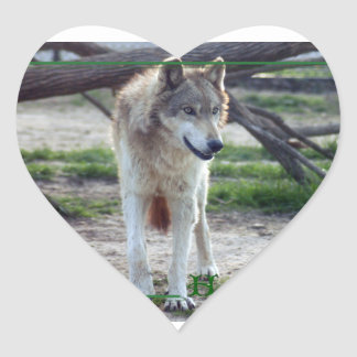 c-2011-grey-wolf-008 heart sticker