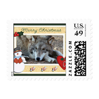 c-2011-grey-wolf-018 postage stamps