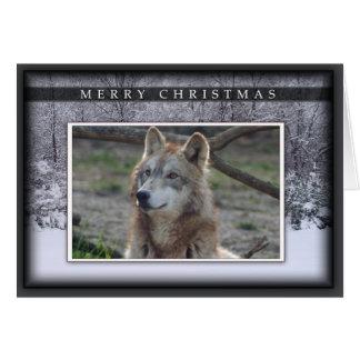 c-2011-grey-wolf-020 greeting card