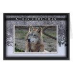 c-2011-grey-wolf-020 tarjeta de felicitación