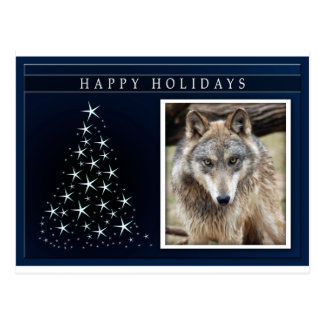 c-2011-grey-wolf-026 postcard
