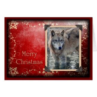 c-2011-grey-wolf-028 card