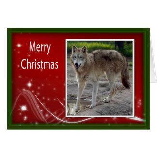 c-2011-grey-wolf-031 card