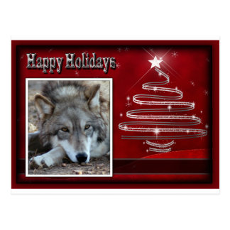 c-2011-grey-wolf-033 postcard