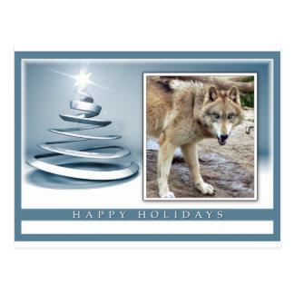 c-2011-grey-wolf-039 postcard