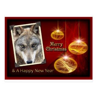 c-2011-grey-wolf-047 postcard