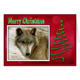 c-2011-grey-wolf-048 card