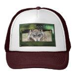 c-2011-grey-wolf-049 gorro