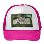 c-2011-grey-wolf-049 gorros bordados