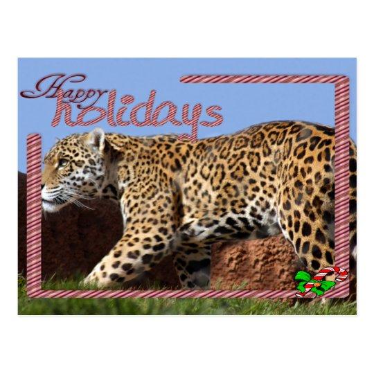 c-2011-jaguar-053 postcard