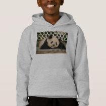 c-2011-panda-0006 hoodie
