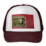 c-2011-panda-0060 mesh hats