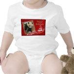 c-2011-panda-0072 baby bodysuits