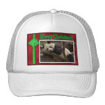 c-2011-panda-0084 mesh hats