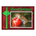 c-2011-tiger-006 invitaciones personales