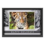 c-2011-tiger-044 anuncios