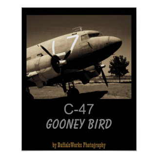 C-47 Sepia Poster