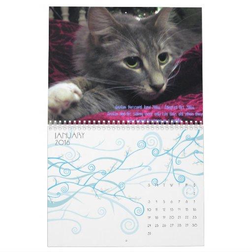 C.A.T.S. Calendario 2009