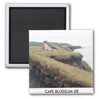 C B PIC (2), CAPE BLOSSUM 08 2 INCH SQUARE MAGNET