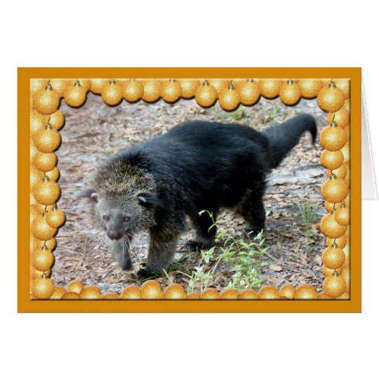 c-bearcat-4 card