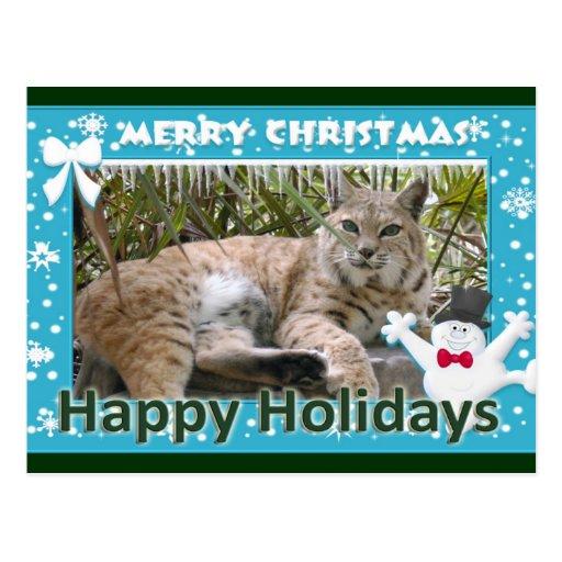 c-bobcat-237-f postal