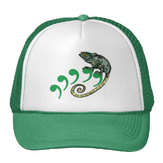 C. Chameleon $17.95 (11 colors) Hat