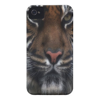 C.E. Predator Tiger 4s barely there iPh Cover