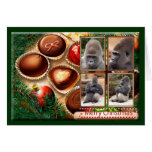 c-gorilla-212 greeting cards