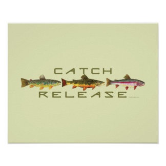 . C & R - Trout Poster