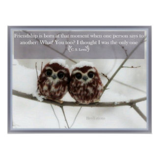 C. S. Lewis and the Owls Poster