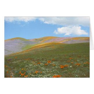 C Spring Lndscp Card