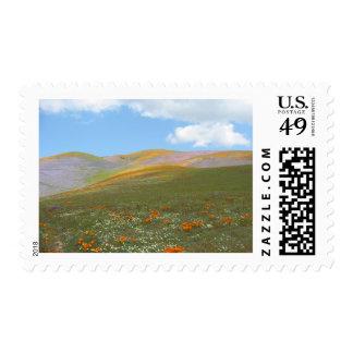 C Spring Lndscp Postage Stamp