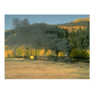 C&TSRR freight nears Weed City Postcard