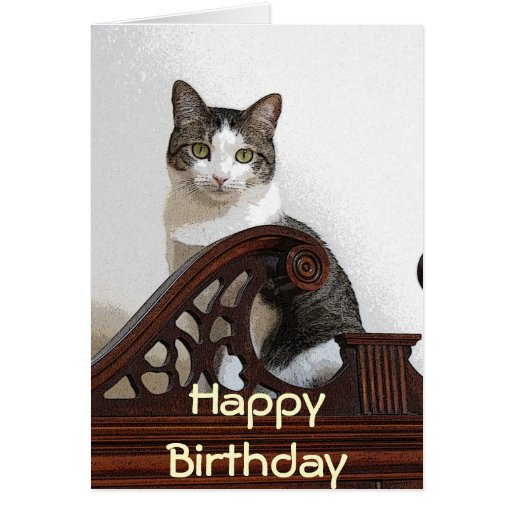 CA- Birthday Kitty Greeting Cards