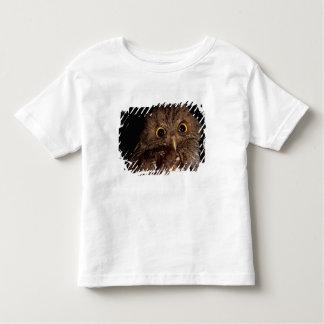 CA, Central Panama, Barro Colorado Island, Toddler T-shirt
