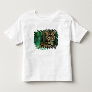 CA, Central Panama, Soberania NP, Margay Toddler T-shirt